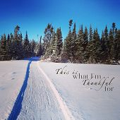 picture of blanket snow  - scenic instagram of snowmobile tracks in snow on a bright day with quote - JPG
