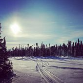 stock photo of blanket snow  - scenic instagram of snowmobile tracks in snow at sunset - JPG