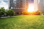 foto of freedom tower  - The lawn in the city of shanghai - JPG