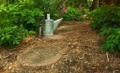 Trowel And Watering Can On The Garden Path