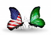 picture of saudi arabia  - Two butterflies with flags on wings as symbol of relations USA and Saudi Arabia - JPG