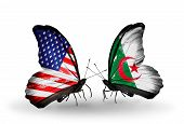Two Butterflies With Flags On Wings As Symbol Of Relations Usa And Algeria