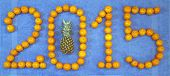 2015 with pineapple and mandarin New Year