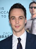 LOS ANGELES - JUN 23:  Jim Parsons arrives to the