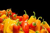 Selection of fresh, ripe red, yellow and orange peppers framed against a black background for placement of copy.