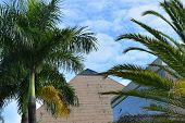 Pyramid in Florida with Palm Trees