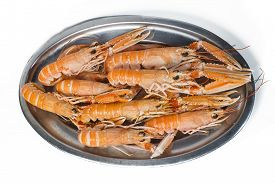 foto of norway lobster  - Tray of norway lobster on white background - JPG