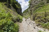 pic of ravines  - Mountain ravine in Pieniny mountains near the Trzy Korony Mount