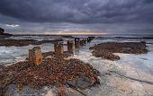 image of tide  - Coledale rockshelf after tides washed in a lot of seawead - JPG