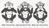 Постер, плакат: The three wise monkeys