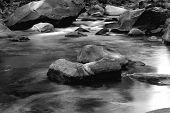 Black And White Image Of Small Rapids In Merced River In Califor poster