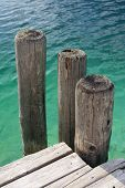 Wooden Poles Of A Pier