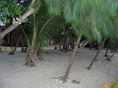 View Into Resort