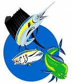 foto of mahi  - retro style illustration of a Sailfish dorado dolphin fish or mahi - JPG