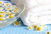 Постер, плакат: Camomile extract with towel