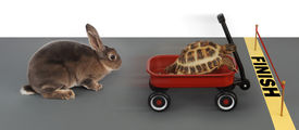 foto of the hare tortoise  - turtle winning the race against a rabbit in a red wagon - JPG