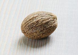 stock photo of musky  - Nutmeg - JPG