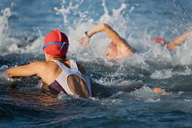 pic of triathlon  - Group people in wetsuit swimming at triathlon - JPG