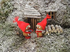 image of gnome  - Gnomes in the forest - JPG