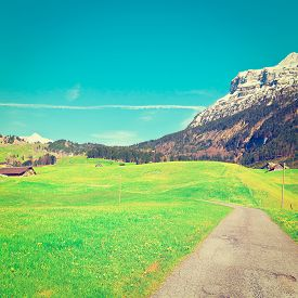 picture of farmhouse  - Asphalt Path Leading to the Farmhouse on the Alpine Pasture Instagram Effect - JPG