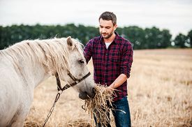 pic of feeding horse  - Side view of young farmer feeding horse while standing in the field - JPG