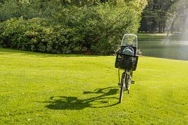 pic of fountain grass  - Ladies bike with a windshield and a plastic box on a sunny day parked on the green grass of a park - JPG