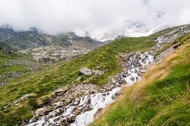 picture of rosa  - Glacier stream flowing down a valley - JPG