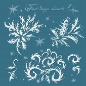 Winter Frost Decor Elements.hand Drawn Template. poster
