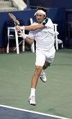 FLUSHING, NY - SEPTEMBER 4: Juan Carlos Ferrero (ESP) volleys during mens singles at the US Open Ten