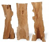 tree trunks carved as art