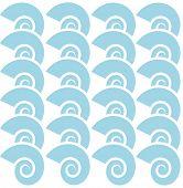 blue scroll shells