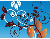 leaves and coil vector