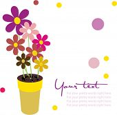 pretty flower pot