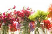 pretty flowers in mason jars