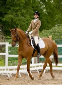 pic of girth  - dressage - JPG