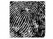 Fingerprint Crop 5