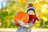Adorable Little Girl Having Fun On A Pumpkin Patch On Beautiful Autumn Day poster
