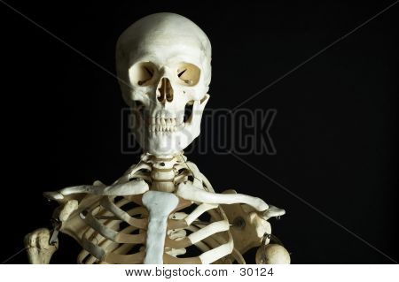 Skeleton 3 poster