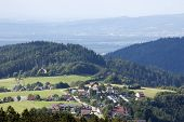 Landscape In The Black-forest
