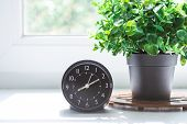 Alarm Clock And Flower In Pot On The Window Sill With The Morning Sunlight. Good Morning Concept. poster