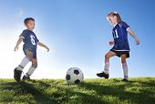 image of little-league  - Young Soccer Players on a team - JPG