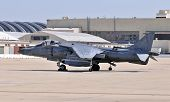 Harrier On The Tarmac