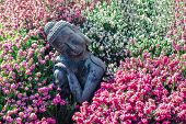 Peaceful Garden. Traditional Serene Buddha Statue Ornament With Beautiful Flowers. Mindful Serenity  poster