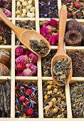 tipos diferentes de chá: verde, preto, china, floral, ervas em uma caixa de madeira com colheres de bambu