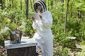 Beekeeper Using Digital Tablet