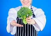 Something Truly Natural. Organic Green Broccoli In Female Hands. Organic Cabbage Cooking Recipe. Hea poster