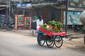 Indian Mobile Street Vendor With Fresh Vegetable