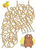 Funny Bear Maze Game