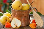 pears in copper jug autumn still life