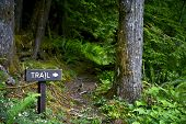 Trail Way Sign